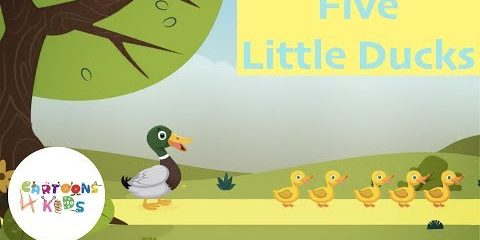 Five Little Ducks | Nursery Rhymes & Kids Songs | Cartoons 4 Kids